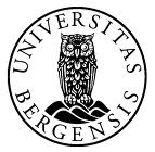 UiB Logo2